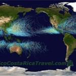 NOAA world wide Hurricanes