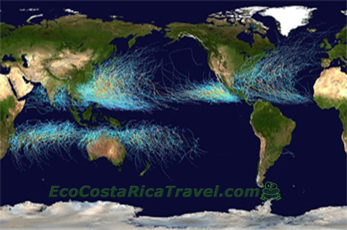 NOAA world wide Hurricanes